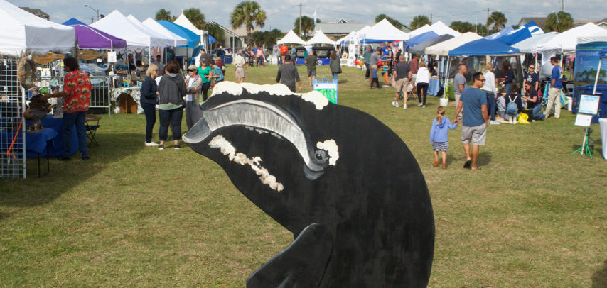 The Right Whale Festival
