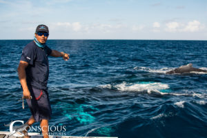 Crewman Emmanuel points the way to the whales